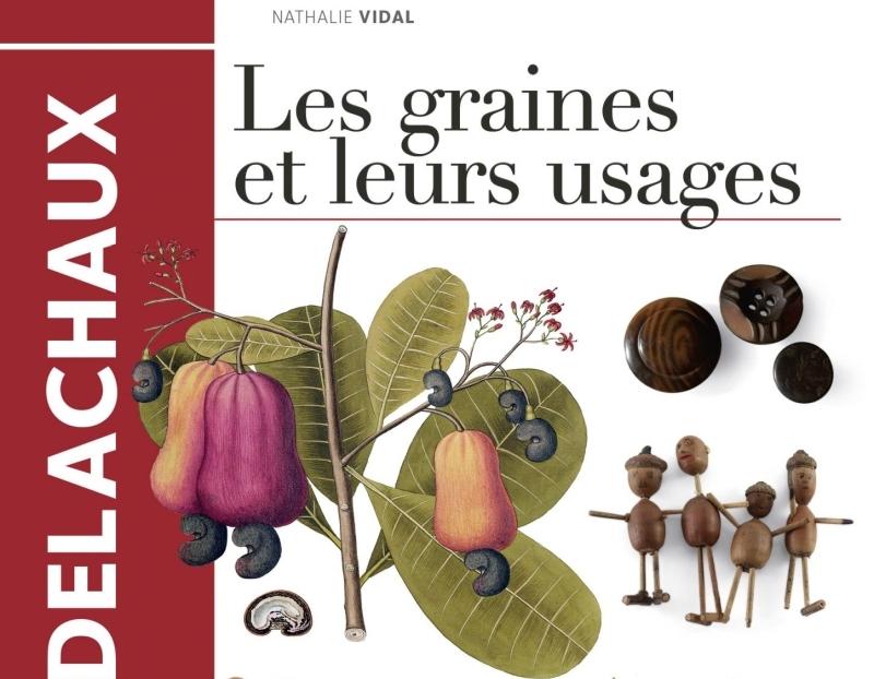 Pour en savoir plus sur les graines