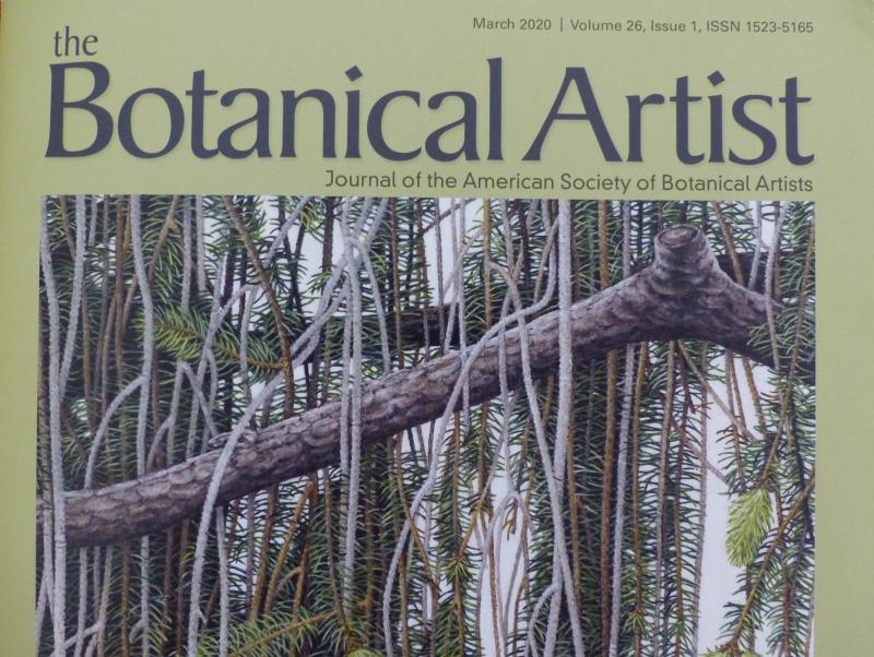 Un article de Perrine dans The Botanical Artist