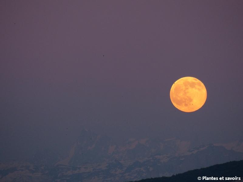 Ce soir, une lune rose…pas rose