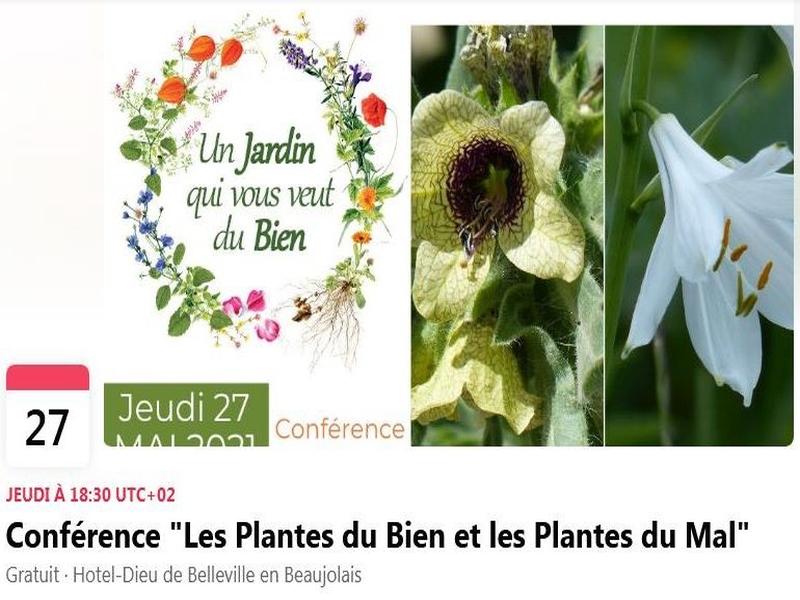 « Les plantes du Bien et les plantes du Mal » à L'Hôtel-Dieu de Belleville-en-Beaujolais