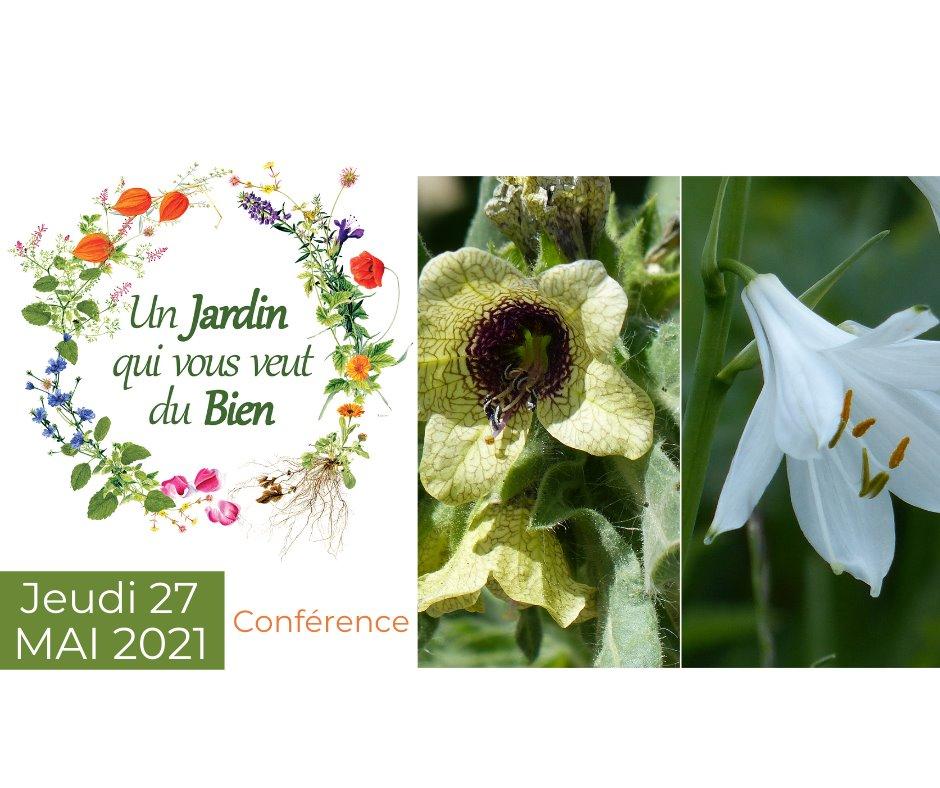 Les plantes du Bien et les plantes du Mal - Richard Arnoldi Conférence à l'Hôtel-Dieu de Belleville-en-Beaujolais 27 mai 2021